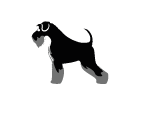 Kennel Corazon Espinado